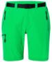 Kraťasy pánské treking, green | XXL - 1/5